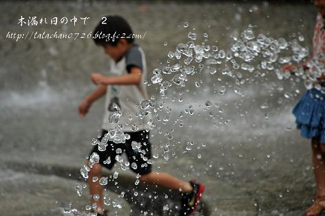 20130622202145f8b.jpg