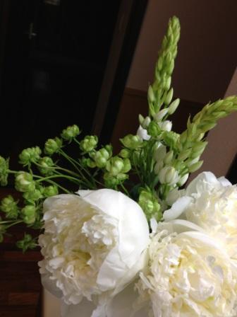 6月2日の花