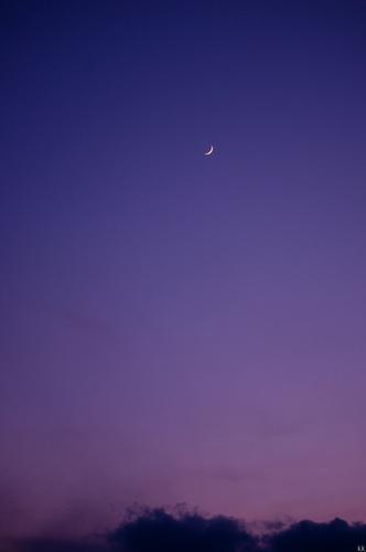 crescent_moon_003-thumbnail2.jpg