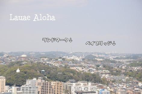 横浜まで見えまーす