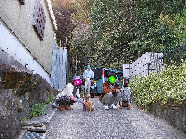 2013・0413うちの前の坂道で②-1