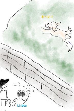 斜面走る!