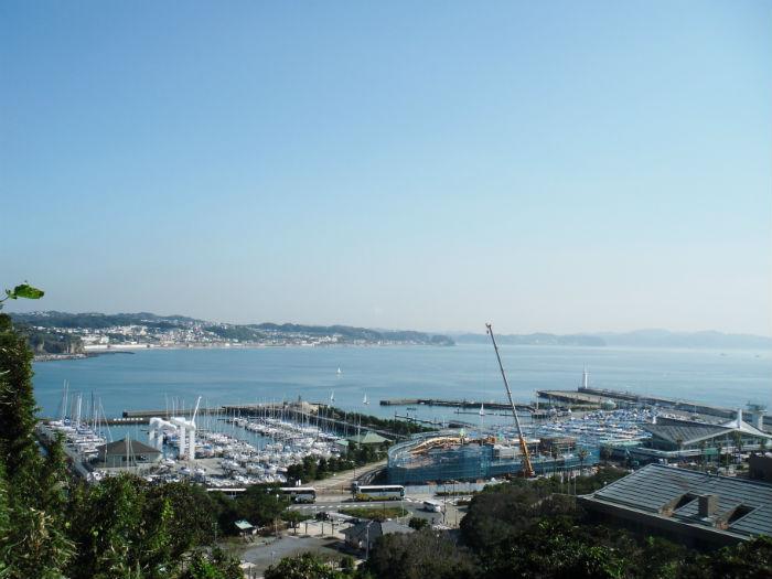 江ノ島 港 風景