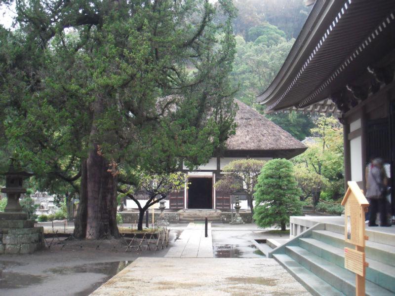 円覚寺 選仏場