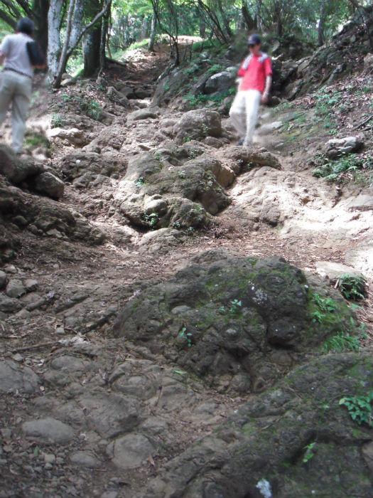 大山 ボタン岩3