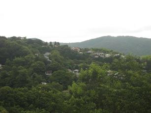 20130625_usami3.jpg