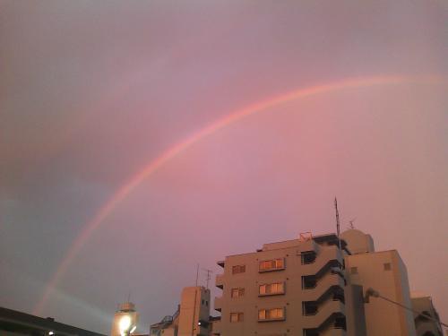 しつこく虹