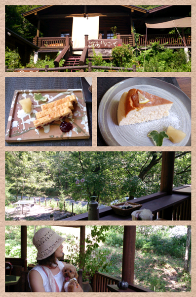 Collage 2013-08-02 14_49_12