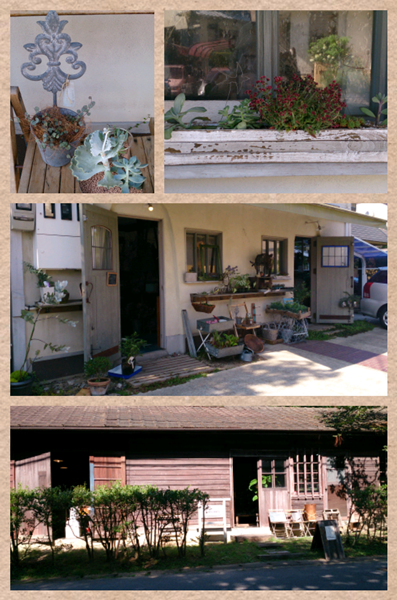 Collage 2013-08-02 16_03_09