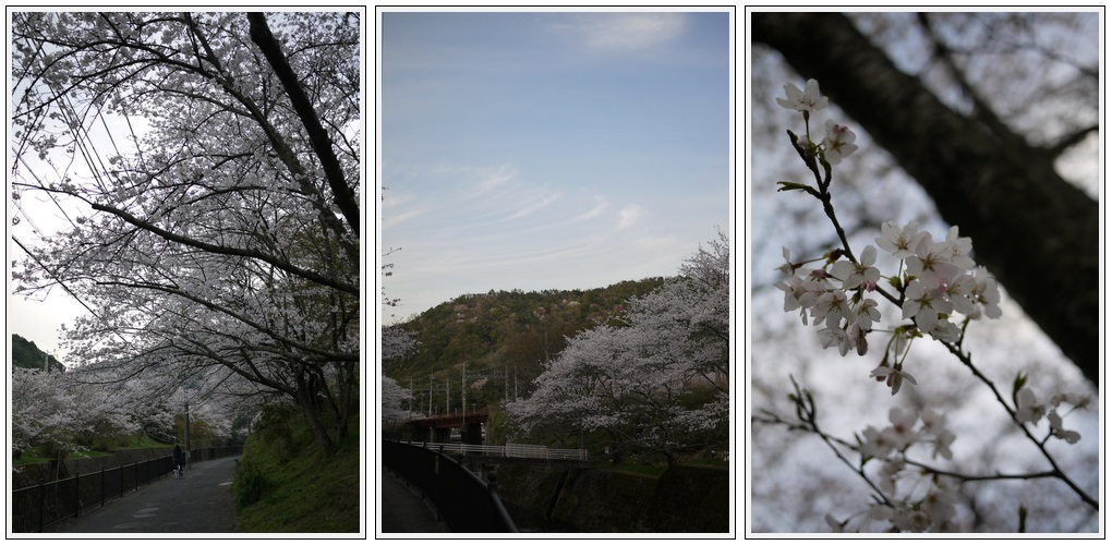2013年4月1日 山中渓