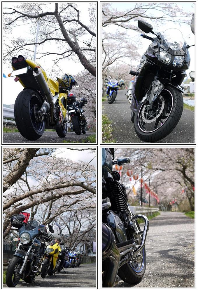 2013年4月9日 宇陀周辺の桜ツーリング(5)