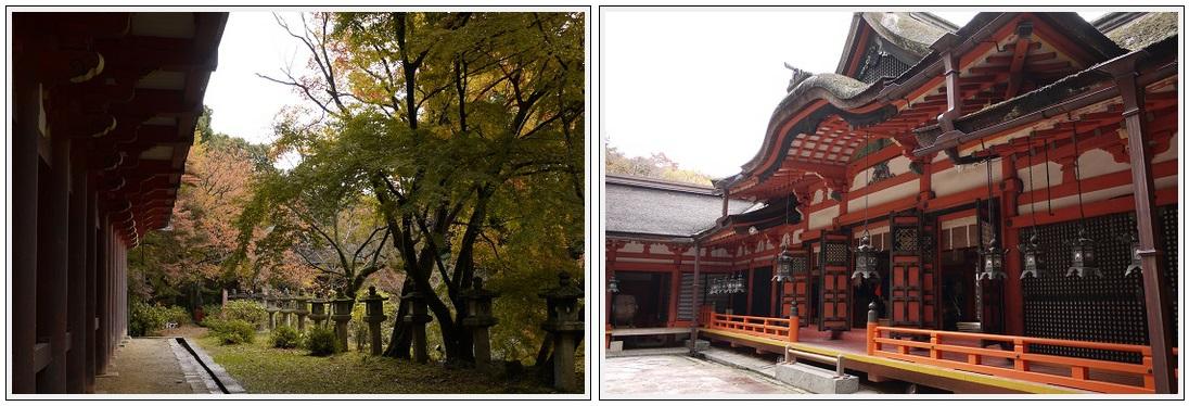 2013年11月19日 談山神社ツーリング (5)