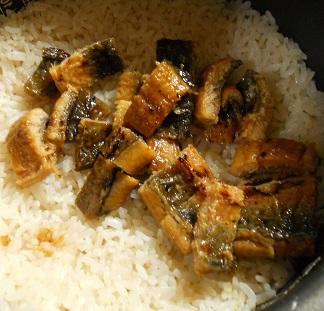 ウナギ寿司5