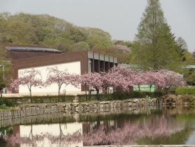 東山動物園1