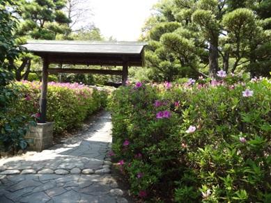 大倉公園1