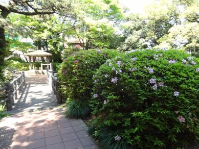 大倉公園2