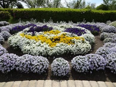 旭公園の花壇2