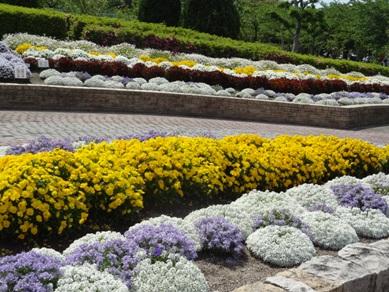 旭公園の花壇1