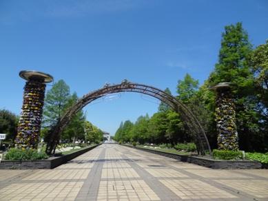 元浜公園のバラ