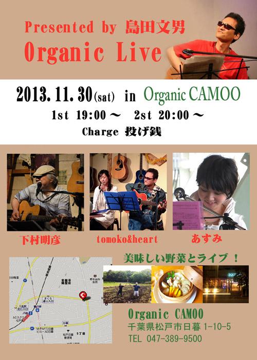 CAMOO-4.jpg