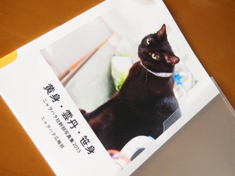 ニャヲハタ写真集