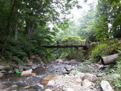 【必見キャンプ生活】 フリーサイトでゆったりキャンプ♪道志の森キャンプ場!
