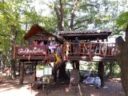 【必見キャンプ生活】 小学1年生でも楽しめる「LUOMUの森」の本格アスレチック♪究極のアウトドア施設!