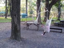 【必見キャンプ生活】 北軽井沢にあるLUOMU(ルオム)の森に行った♪至高のアウトドア施設!