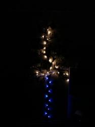 ウォールステッカーでクリスマスツリー(照明無し)②