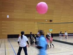 【子供と遊ぶ】 家族で楽しめるカナダ生まれのスポーツ「キンボール」♪