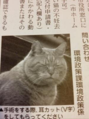 fc2blog_20130619152408c5c.jpg
