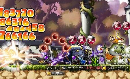 Maple11505a.jpg