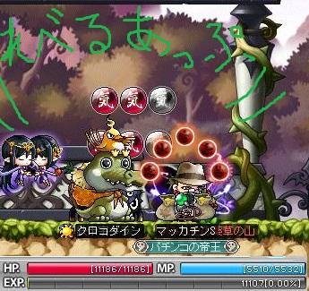 Maple11550ab.jpg