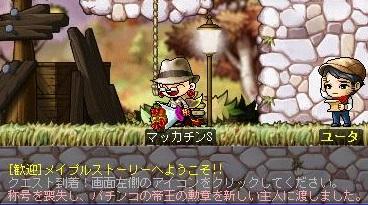 Maple11556a.jpg