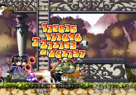 Maple11557a.jpg