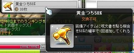 Maple11601a.jpg