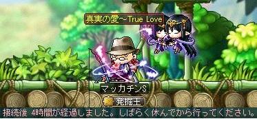 Maple11664a.jpg