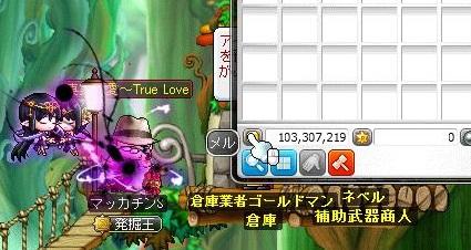 Maple11691a.jpg