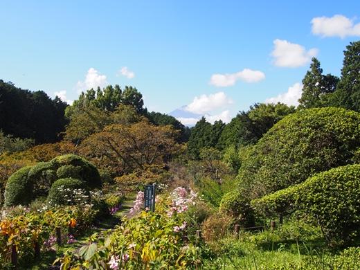 chichibu-20131006-12s.jpg