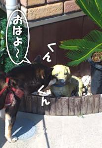 130425_wanko.jpg