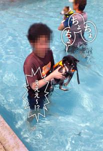 130810_pool3.jpg