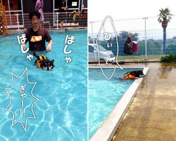 130810_pool4.jpg