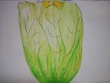 ト白菜はクサイ