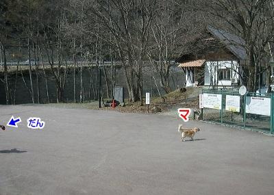 CIMG9202 (400x285)ー1