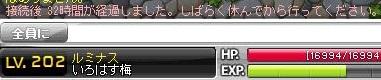 Maple131101_100227.jpg