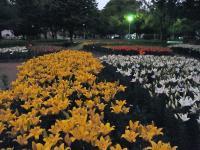 BL130530千種公園1RIMG0057