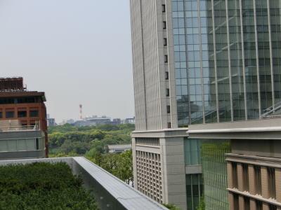 4.29 東京駅&KITTE 11