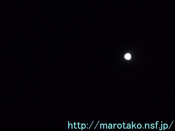 maro130926.jpg