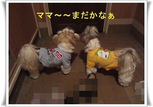 軽井沢 026