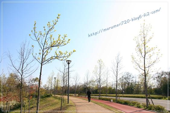 IMG_5164.jpg